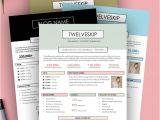 Advertising Media Kit Template 32 Best Media Kit Design Examples Images On Pinterest