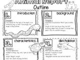 Animal Research for Kids Template Teacher Laura Animal Reports for Older Kids