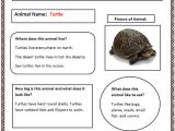 Animal Research for Kids Template Ultimate Guide to Search Engine Optimization Drive