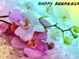 Anniversary Card for Didi Jiju Idea by Romaana On Birthday Marriage Anniversary Quotes