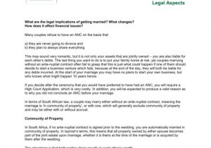 Antenuptial Contract Template Business Plan for Franchise In south Africa Templates
