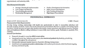 Area Of Expertise Resume Sample Resume Words for Sales Position