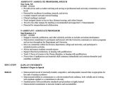 Assistant Professor Sample Resume assistant associate Professor Resume Samples Velvet Jobs