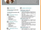 Attractive Resume format Word File 7 Free Resume Template Word Ledger Review
