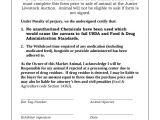 Auction Certificate Templates Free Auction Certificate Template 7 Free Word Pdf Documents