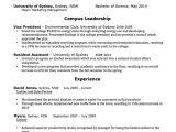 Australian Resume format Word Cv Template Free Professional Resume Templates Word