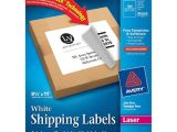 Avery Dennison Label Templates Mailing Label Avery Dennison 5165 Ave5165 Labels