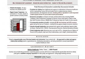 Award Winning Resume Samples Executive Resume Writer Laura Smith Proulx Award Winning
