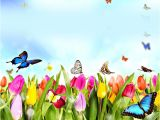 Background Image In Email Template 15 Email Backgrounds Free Backgrounds Download Free