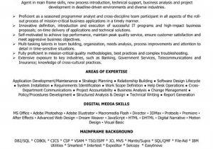 Banking Professional Resume Banking Professional Resume Sample Template