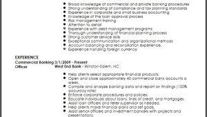 Banking Professional Resume Free Professional Banking Resume Template Resume now