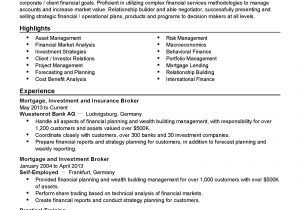 Banking Professional Resume Professional International Banking Professional Templates