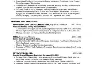 Banking Professional Resume Sample Banking Resumes Sample Resumes