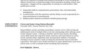 Basic Bartender Resume Basic Bartender Resume Template