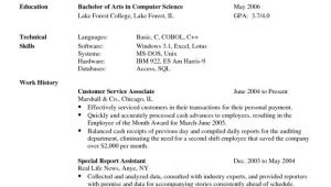 Basic Knowledge Of Language On Resume Language Skills 3 Resume format Resume Skills Resume