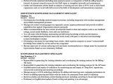 Basic Knowledge Of Spanish Resume Knowledge Management Specialist Resume Samples Velvet Jobs