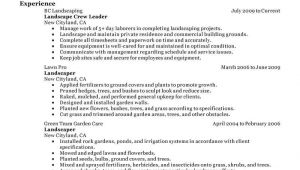 Basic Landscaping Resume Best Landscaping Resume Example Livecareer