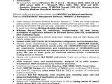 Basic Linux Resume Network System Administrator Cv It Executive Resume