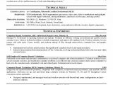 Basic Networking Resume Literature Review Car Buying Behavior Buy A Research