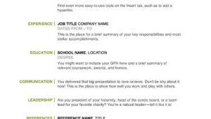 Basic Resume Examples Basic Resume