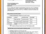 Basic Resume Examples India 7 Cv format Pdf Indian Style theorynpractice