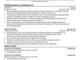 Basic Resume Examples Skills 7 Best Basic Resume Examples Images On Pinterest Debt
