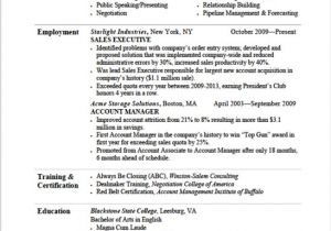 Basic Resume Guide What is A Resume