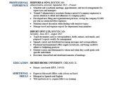 Basic Resume Header Expert Preferred Resume Templates Basic Simple