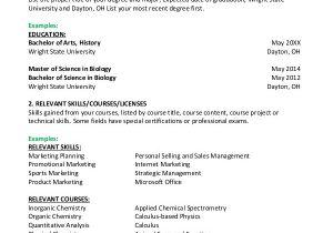 Basic Resume Images Basic Resume Sample 8 Examples In Pdf Word
