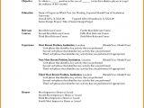 Basic Resume List 6 Basic Resume Templates Word Professional Resume List