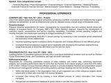 Basic Resume Look 44 Basic Resume Template Free Download