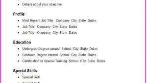 Basic Resume Making Basic Resume Template E Commerce