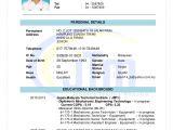 Basic Resume Malaysia Resume Adam Big