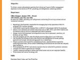 Basic Resume Objective Examples 10 11 Curriculum Vitae Objectives Examples