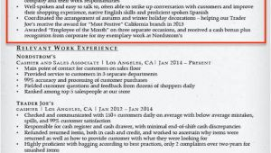 Basic Resume Qualifications Examples Retail Resume Summary Examples Free Office Templates