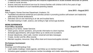 Basic Resume Sample for Students Basic Resume Samples Examples Templates 8 Documents