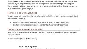 Basic Resume Summary Examples 9 Career Summary Examples Pdf Examples