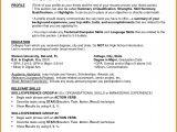 Basic Resume Worksheet 7 Functional Resume Worksheet Professional Resume List