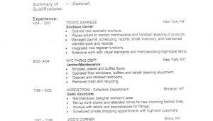 Basic Resume Zone Resume Outline 5 Resume Outline Resume Templates Good