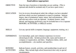 Basic Sample Resume Basic Resume Template Word Health Symptoms and Cure Com