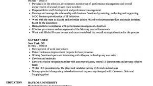 Basic Sap Knowledge Resume Sap Resume Samples Velvet Jobs