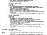 Basic Sap Knowledge Resume Sap Security Analyst Resume Samples Velvet Jobs