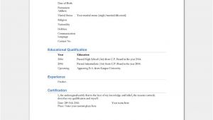 Basic Simple Resume format for Freshers Resume Template for Freshers 18 Samples In Word Pdf