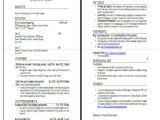 Basic Student Resume 19 Basic Resume format Templates Pdf Doc Free
