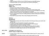 Basic Understanding Resume oracle Resume Samples Velvet Jobs