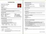 Bca Fresher Resume format Download Pdf Cv Samples for Freshers Bca 2 Bca Fresher Resume Samples