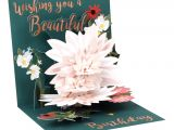 Beautiful Pop Up Card for Birthday Up with Paper Everyday Pop Up Greeting Card 5 1 4 X 5 1 4 Beautiful Birthday Item 7224099