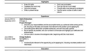 Beginner Job Application Resume Sample Beginner 3 Resume Templates Job Resume Template Job