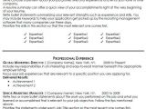 Best Professional Resume Templates Marketing Resume Template Health Symptoms and Cure Com