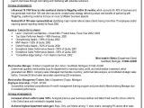 Best Resume format for Job Interview Best Curriculum Vitae Writer Service Usa Professional